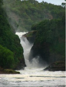 about murchison falls