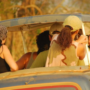 game drives murchison